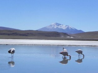 Bolivia, vakantie, zoutvlakte, Salar de Uyuni