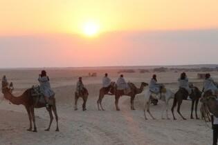 Vakantie naar Tunesie - Dromedaris rijden