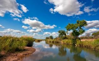 Kruger National Park – Zuid-Afrika