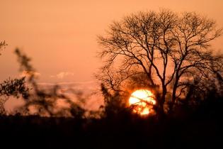 Kruger National Park sunset South Africa