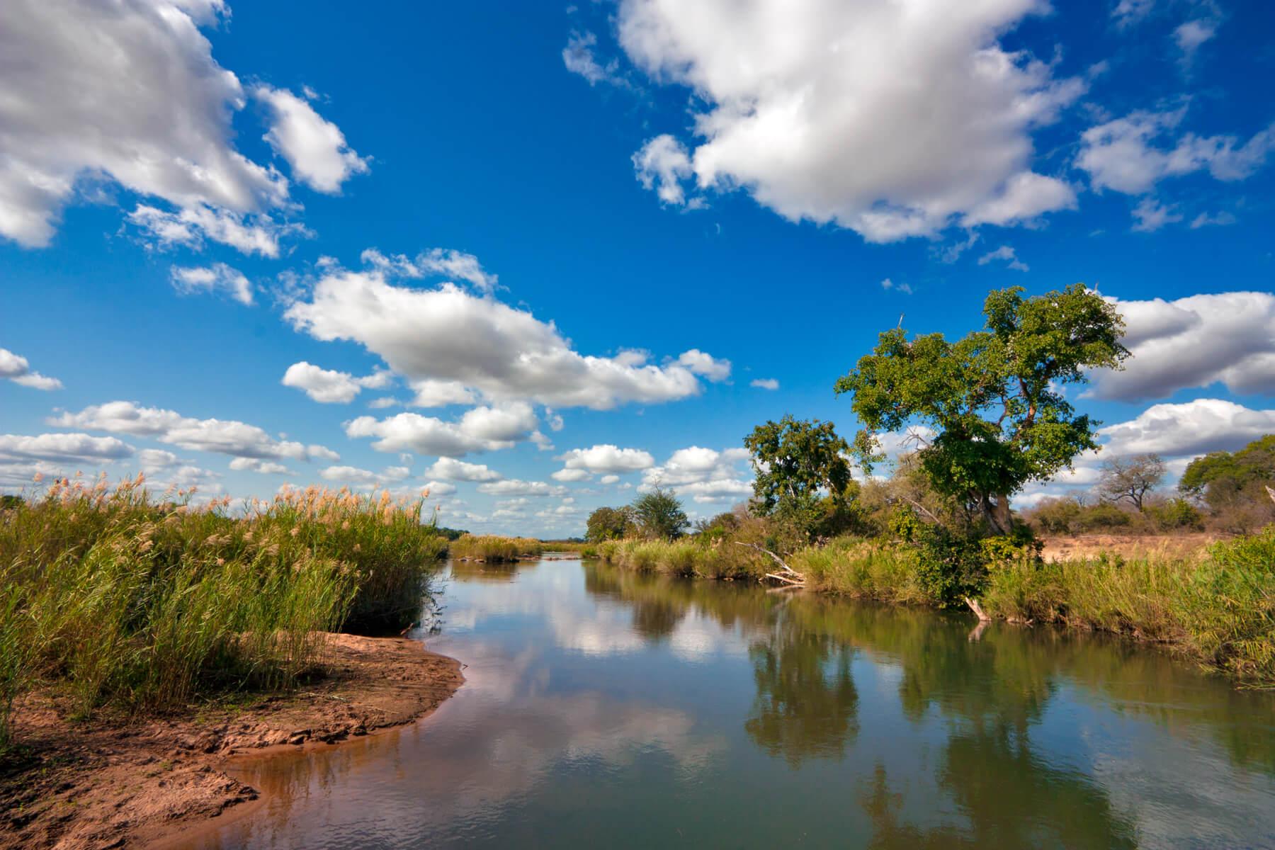 Kruger national park zuid afrika wiki vakantie for Landscape sa