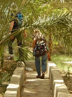 Al Ain Oasis, Abu Dhabi, United Arab Emirates