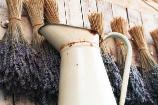 Lavendelvelden in de Provence