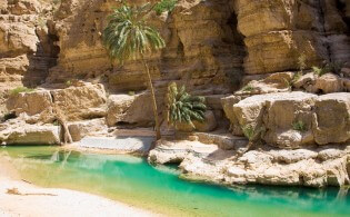 Natuurschoon in Wadi Shab