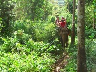 Rijden op een olifant, Koh Chang, Thailand