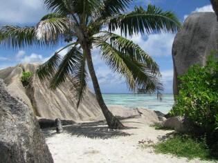 Natuur op de Seychellen
