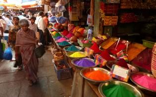 Ontdek de kleurrijke cultuur van Suriname tijdens een stedentrip naar Paramaribo!
