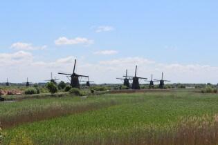 Nederlands landschap rondom de molens van Kinderdijk