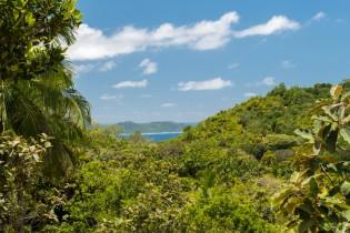 Vallee de Mai, Praslin, Seychellen
