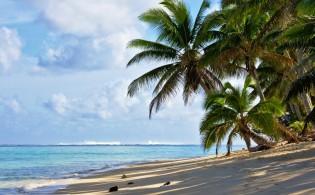 Vakantie op Rarotonga – Cookeilanden