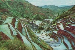 Rijstterrassen van Banaue, vakantie op de Filipijnen, rondreis