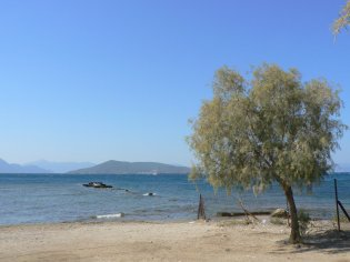 Aegina strand