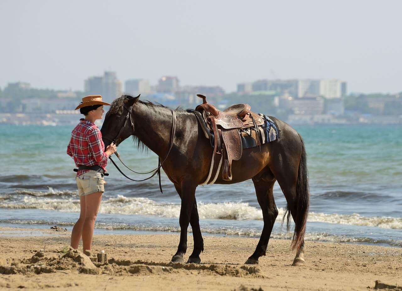Op vakantie met paarden