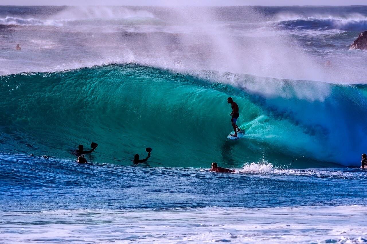 Surf- en Taalreizen
