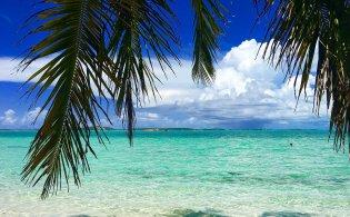 Vakantie op Grand Bahama