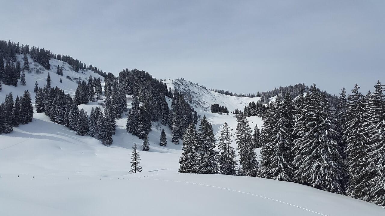 Waarom wintersport de vetste vakantie is!