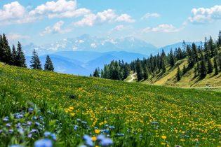 Alpen ontspannen