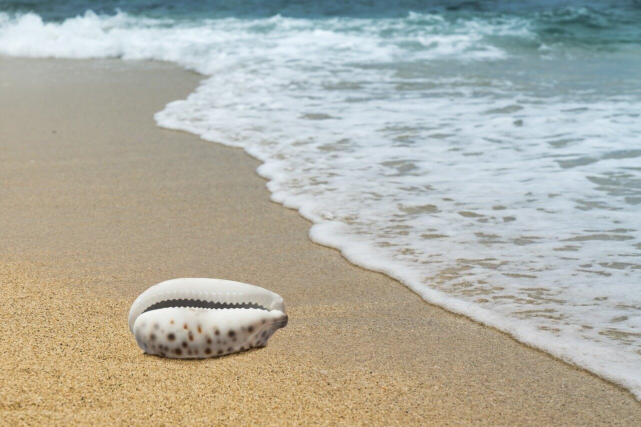 Een dagje naar het strand, wat neem je mee?