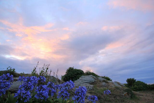 Vakantie op het bloemeneiland Île-de-Bréhat in Frankrijk