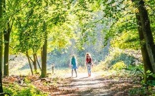 Ontdek Limburg en blijf slapen op een vakantiepark