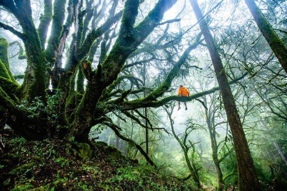 Survivaltocht in het woud